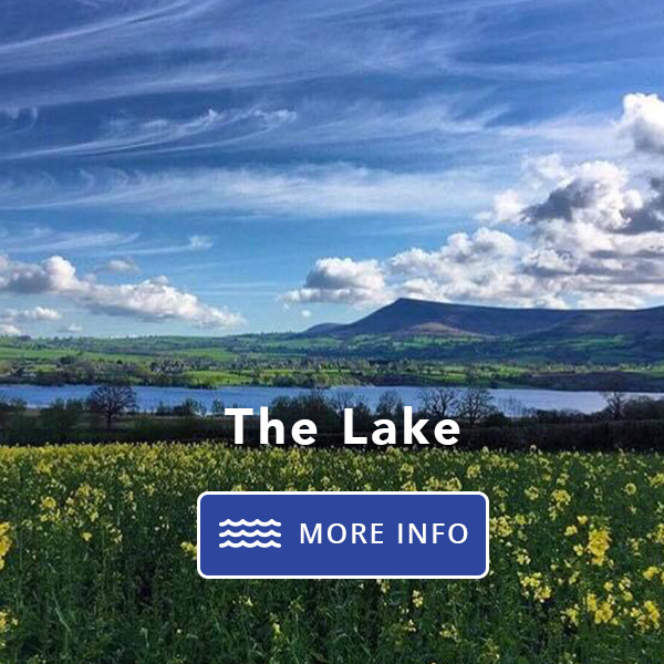lakeside services thelake